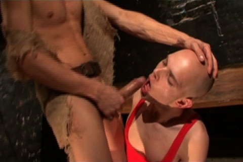 le mâle dominant est à la fois jeune, macho et musclé avec un passif soumis rasé et docile
